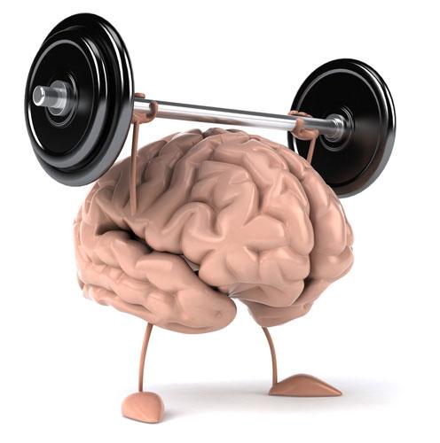 Dementia Concerns? Speed-training!