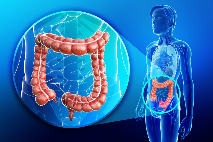 Digestive Dysfunction = Gut Gone Bad!