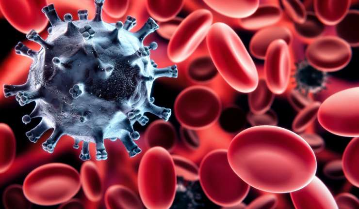 5 Surprising Facts About Your Immune System