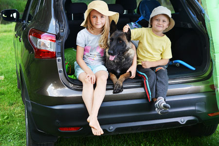 How to Keep Your Kids (and Dogs) Calm During Summer Travels