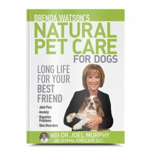 Natural Pet Care for Dogs