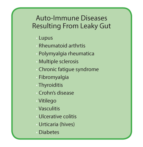 auto immune diseases leaky gut